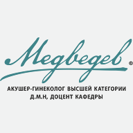 Медведев-Создание фирменного стиля