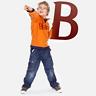 Биг Бен-Сайт академии языков